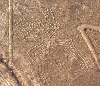 L'Araignée, géoglyphes de Nazca, Pérou